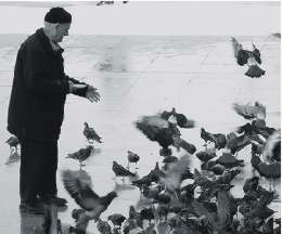 Old Charlie hanging with his birds.